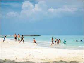 Aruba beach for article article
