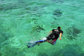 Snorkelingsabahflickr article