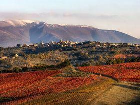 635501822982750108 montefalco landscape article