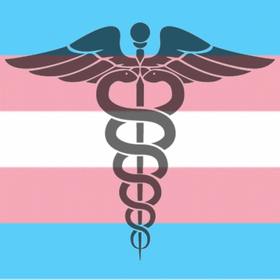 Transgender health article