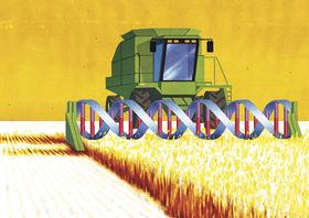 Monsanto gm crops.8972426.87 article