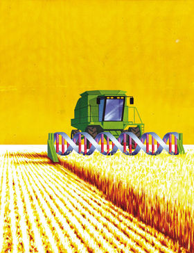Monsanto the belligerent strongman trying to control america s food supply.8975043.87 article