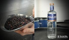 Makarglasgow article