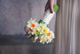 Bridal 20131226 tinted banner article