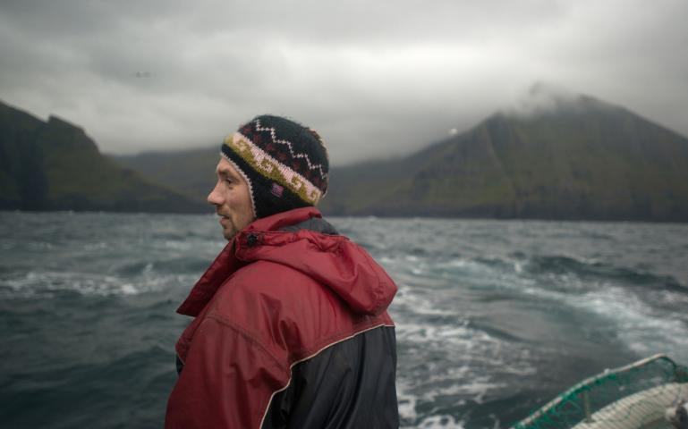 Sierra island and whales wb