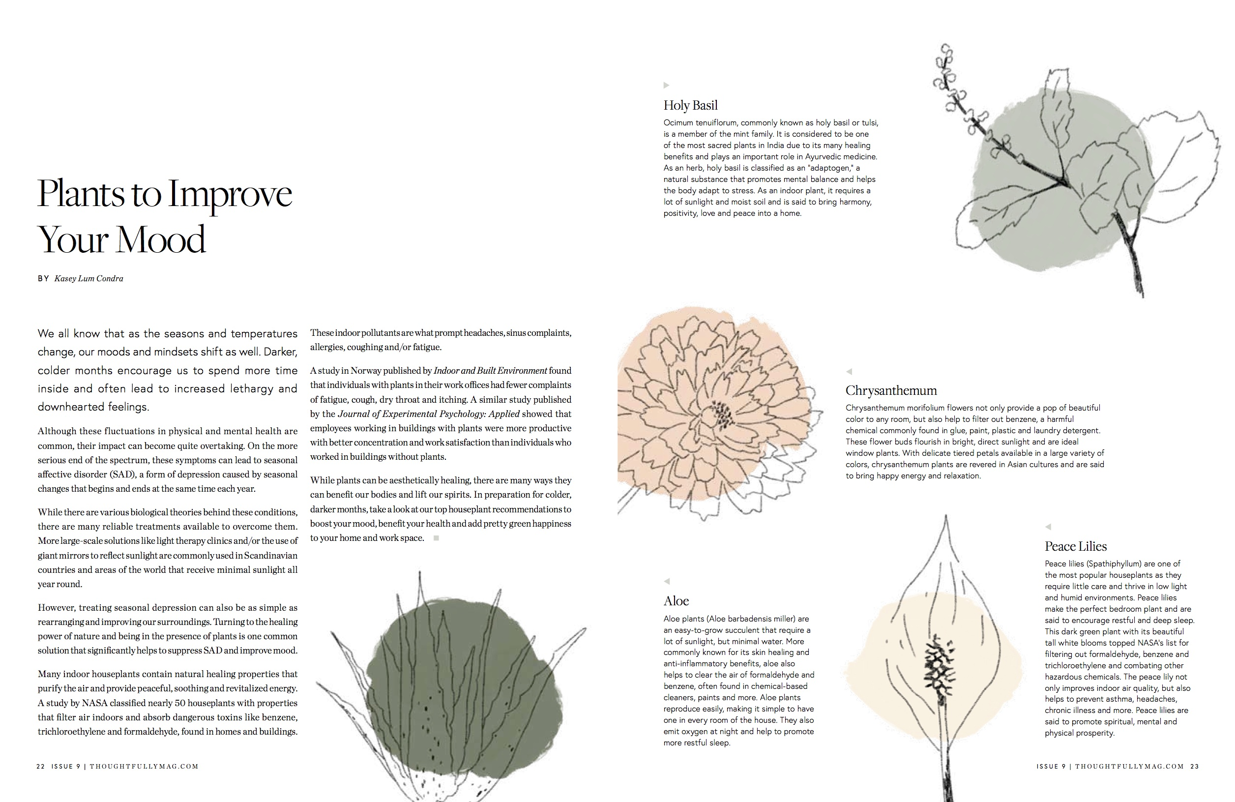 Thoughtfully issue9 plants draft 1