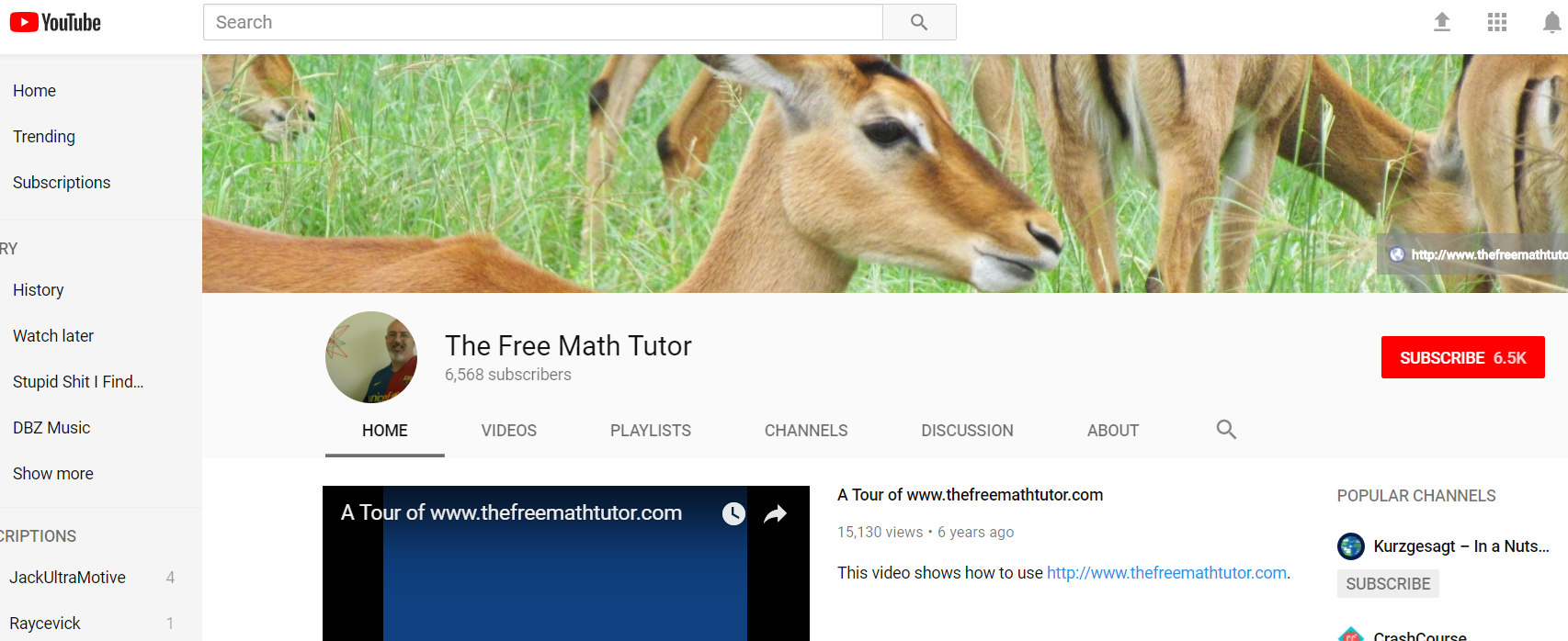 The Free Math Tutor on YouTube