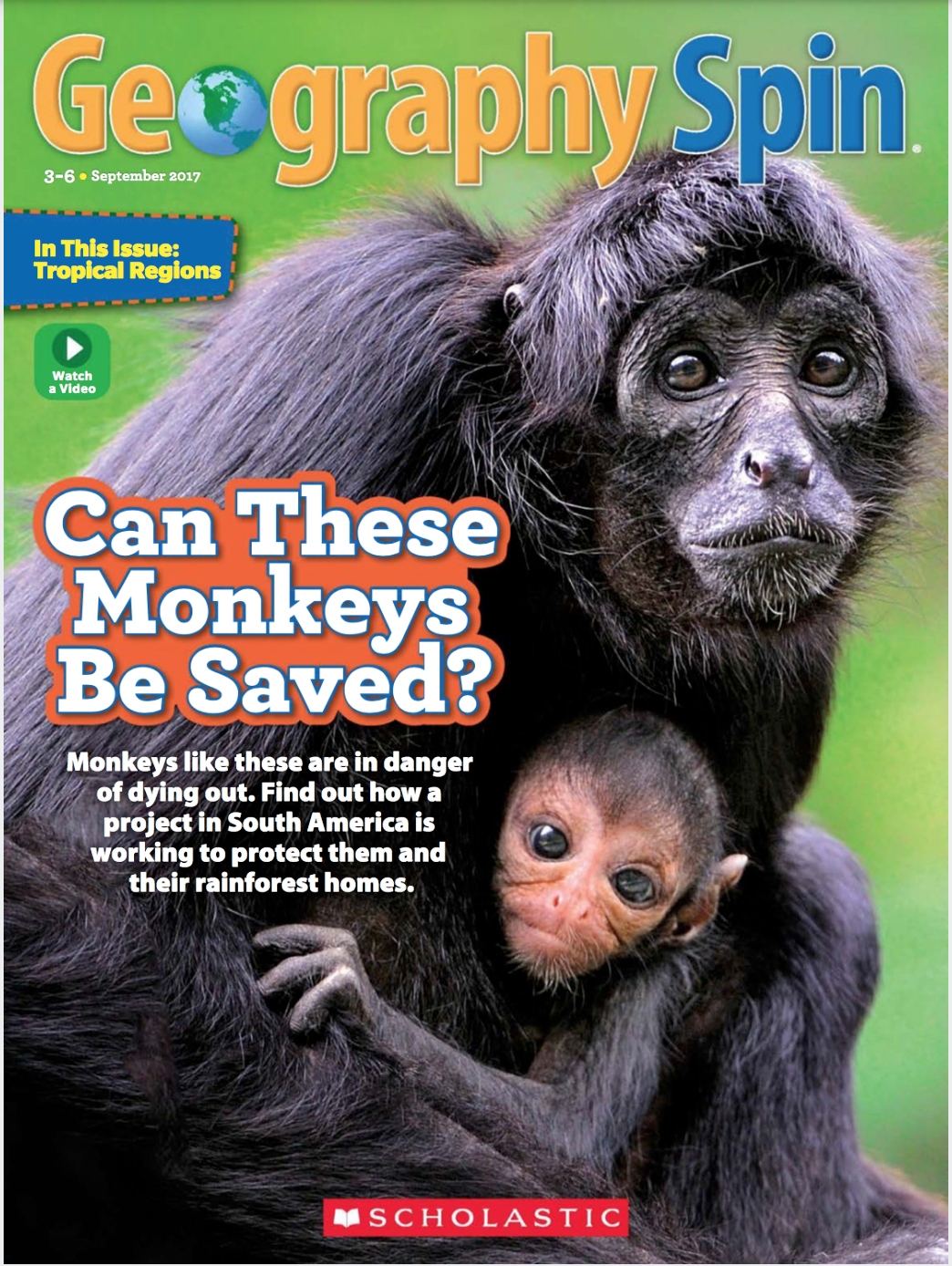 Geospin spider monkeys cover