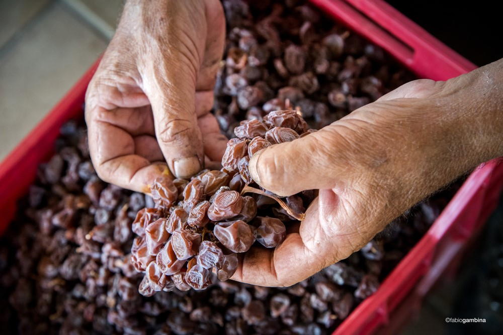 Hand destemming of dried grapes