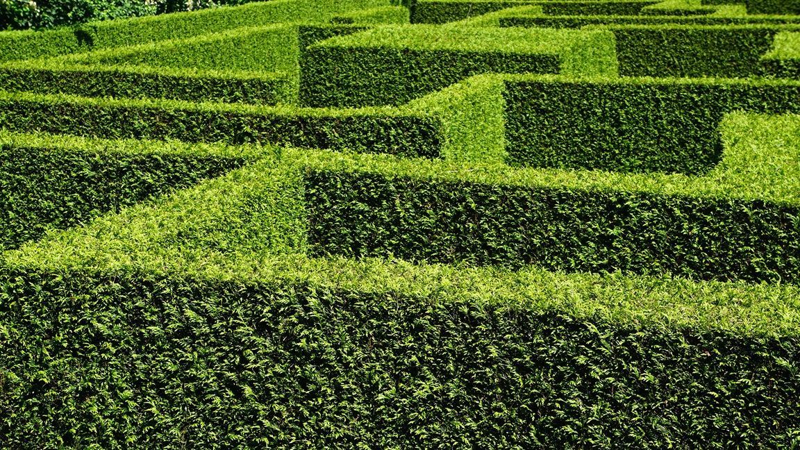 2304x1296 hedge maze find discover