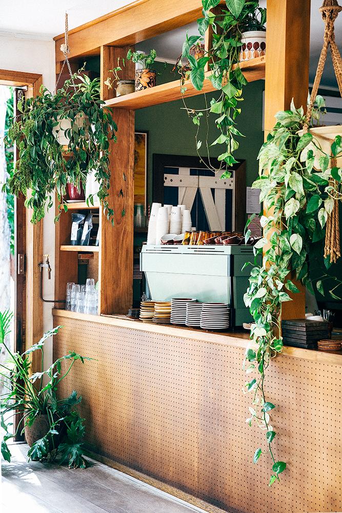Folk cafe3