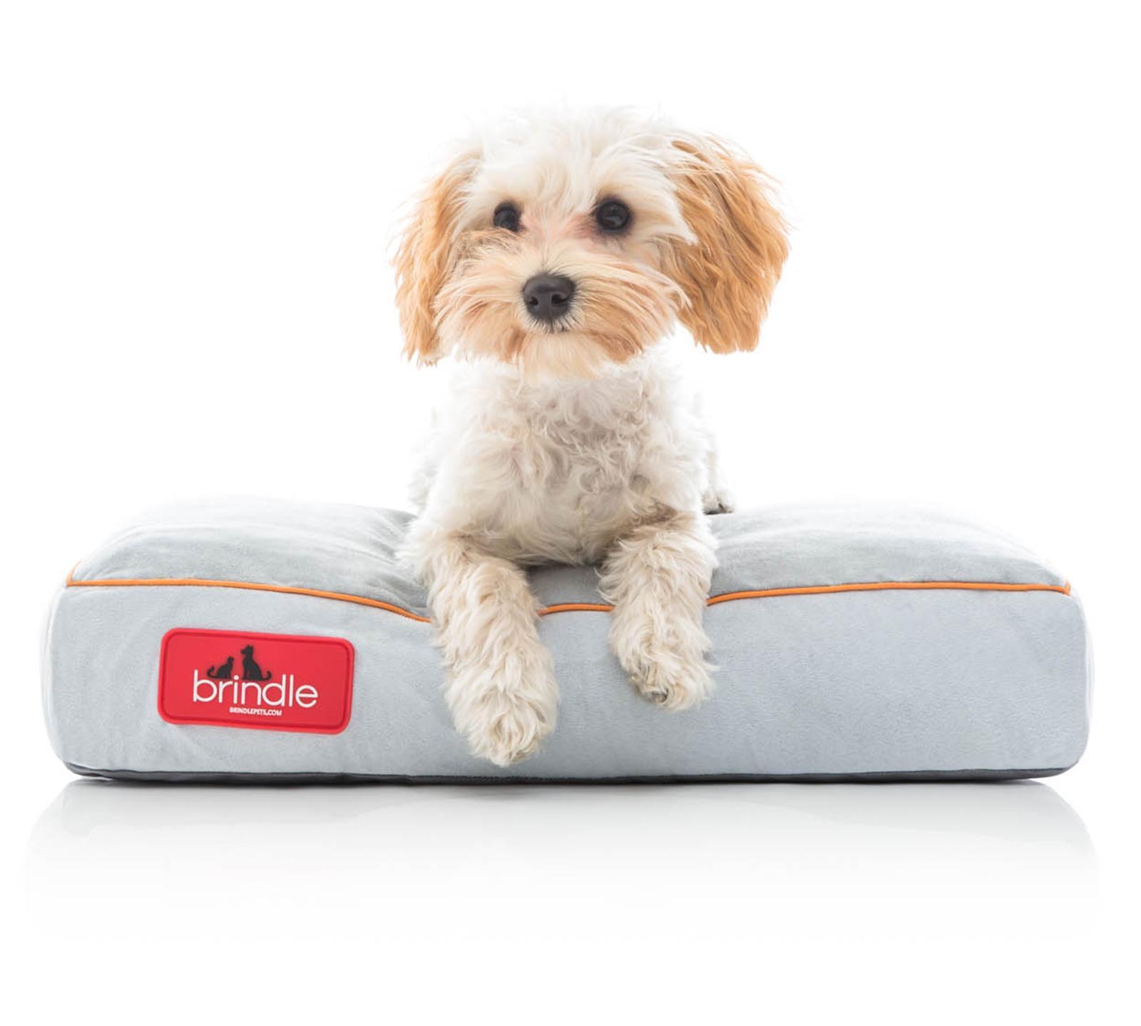 Dog in Brindle Plush Shredded Memory Foam Pet Bed