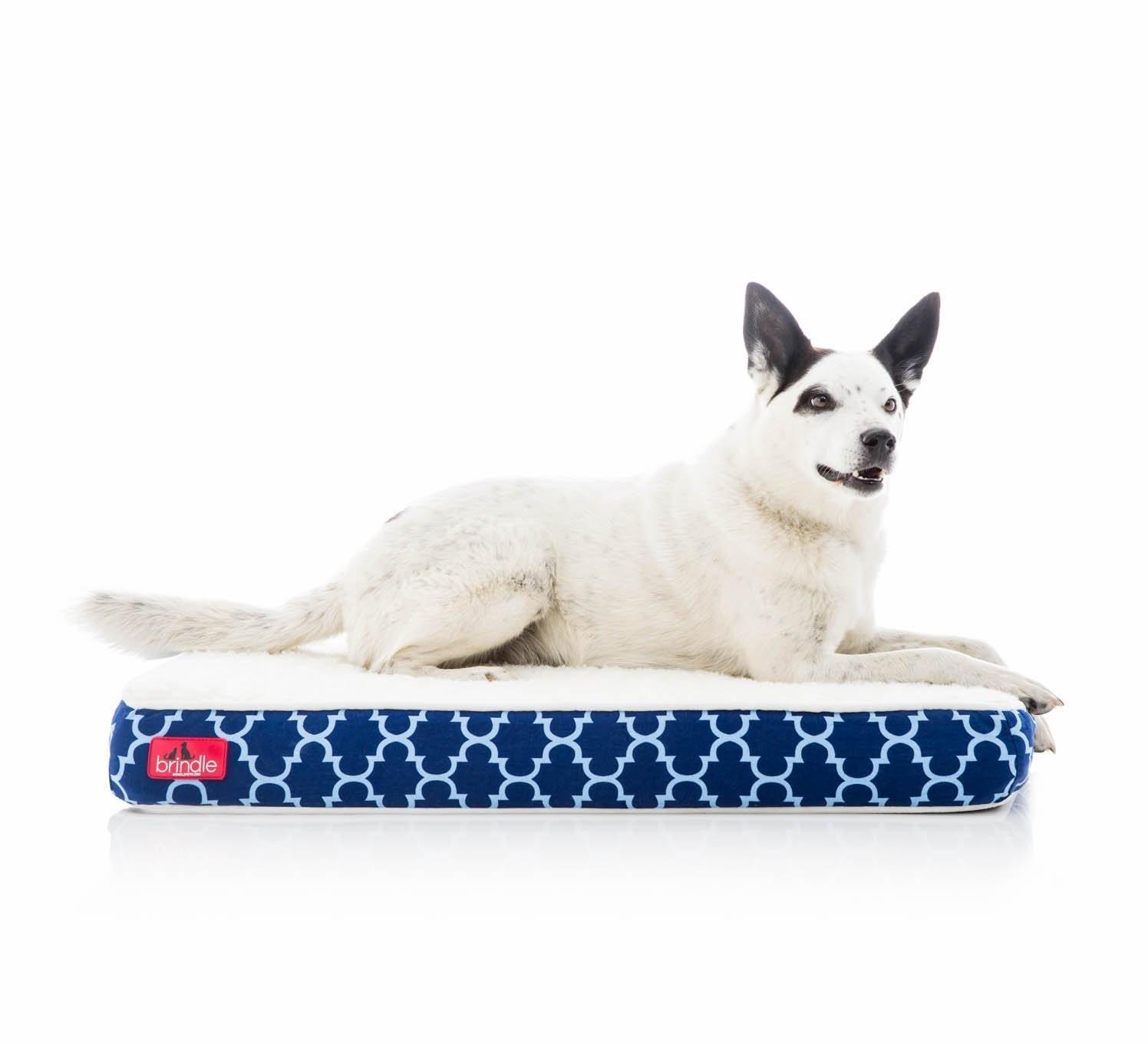 """Dog in Brindle Orthopedic 4"""" Memory Foam Pet Bed"""