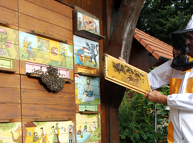 The uniquely Slovenian AŽ hives can be assembled in pavilions