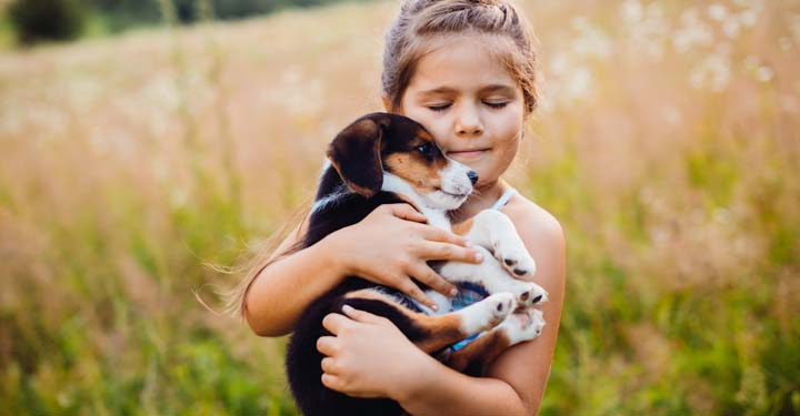 Little girl with closed eyes blissfully holding a puppy