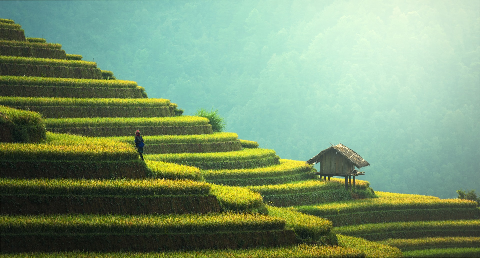 Bali_CC0.jpg?1545474116