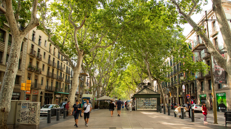 Barcelona_las_Ramblas.jpg?1549474774