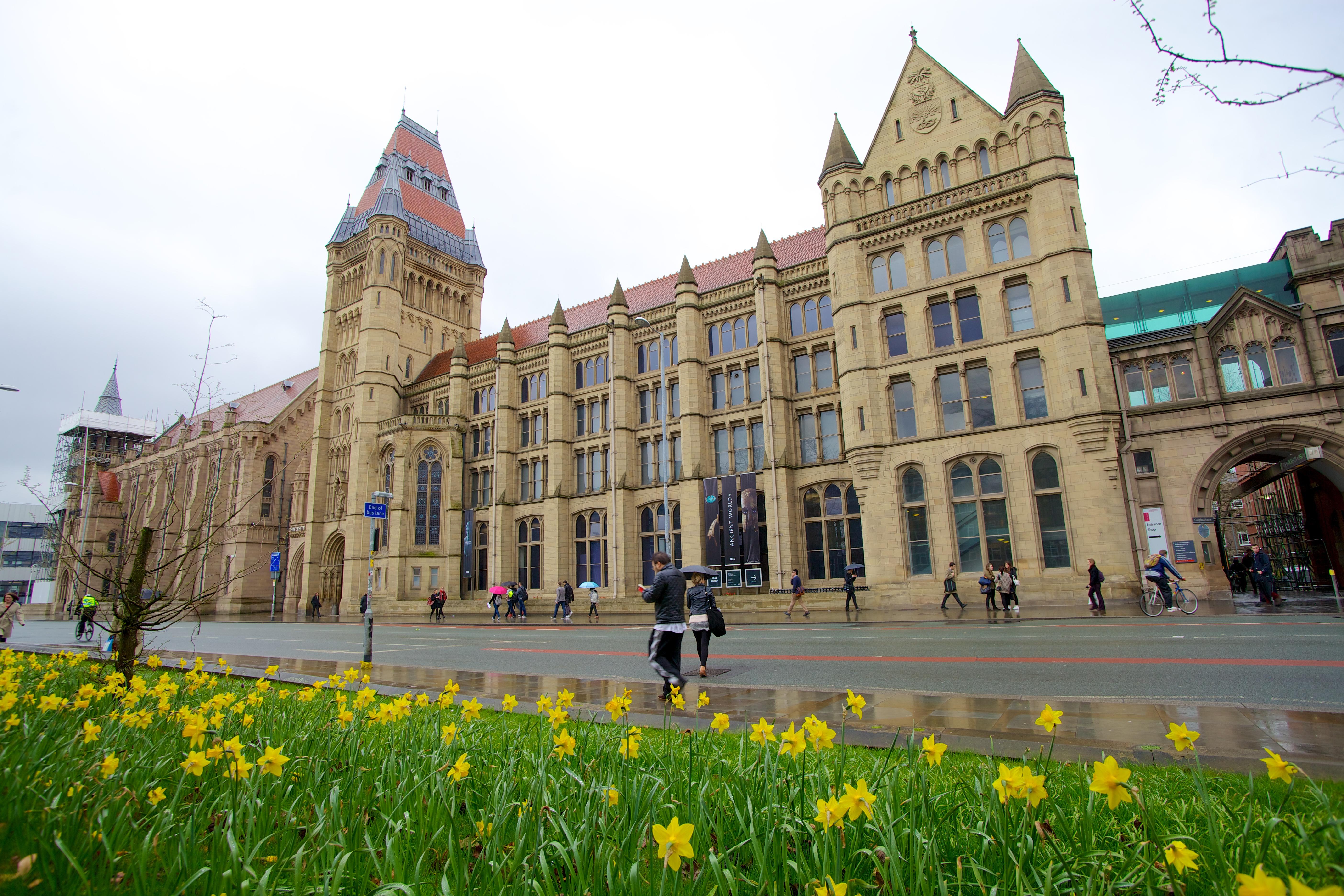 Imagebox_-_Manchester_Museum-125.jpg?1549532700