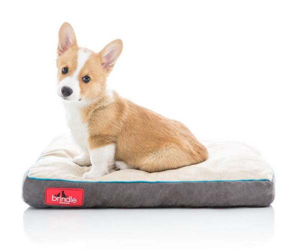 Brindle Plush Shredded Memory Foam Pet Bed
