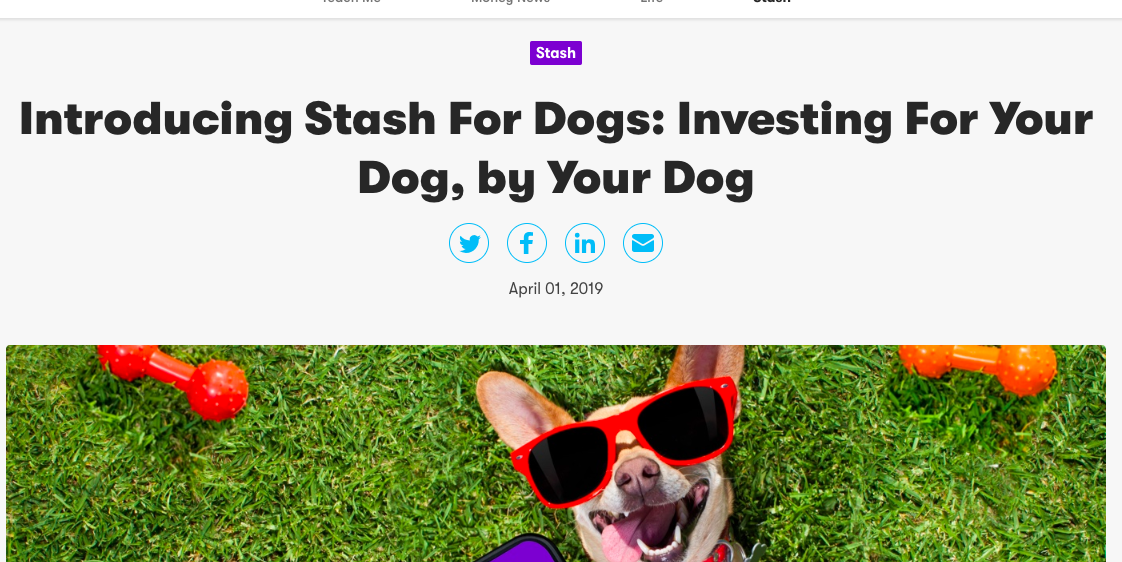 The Best Pet-Related April Fools Pranks – American Kennel Club