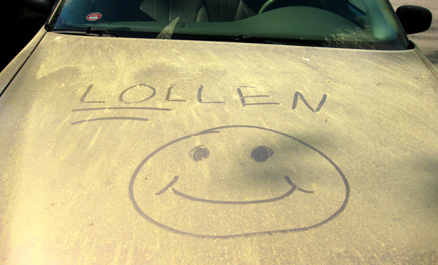 How to Protect Your Car Against Pollen