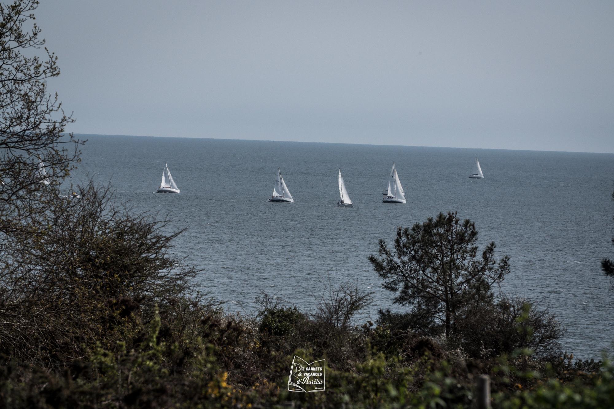 Expedia_CDV_Morbihan-50.jpg?1565603019