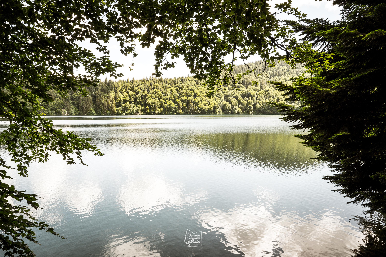 CDV-Auvergne_-20.jpg?1565615651
