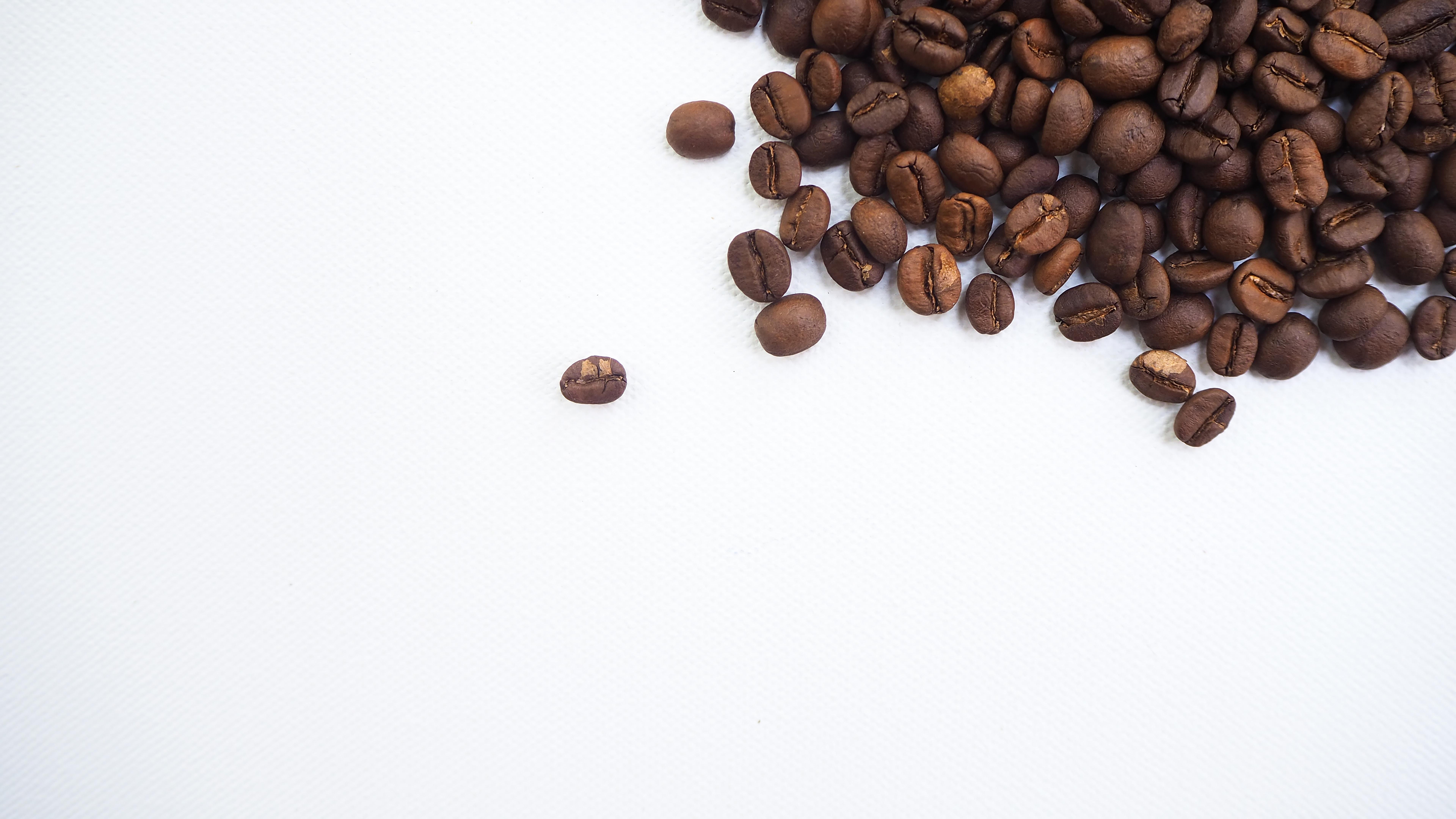 coffee-geek-F_lXnjha3jc-unsplash.jpg?1574377774