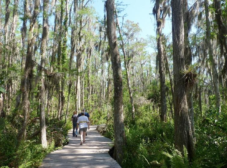 Great Clips Royal Palm Beach Florida