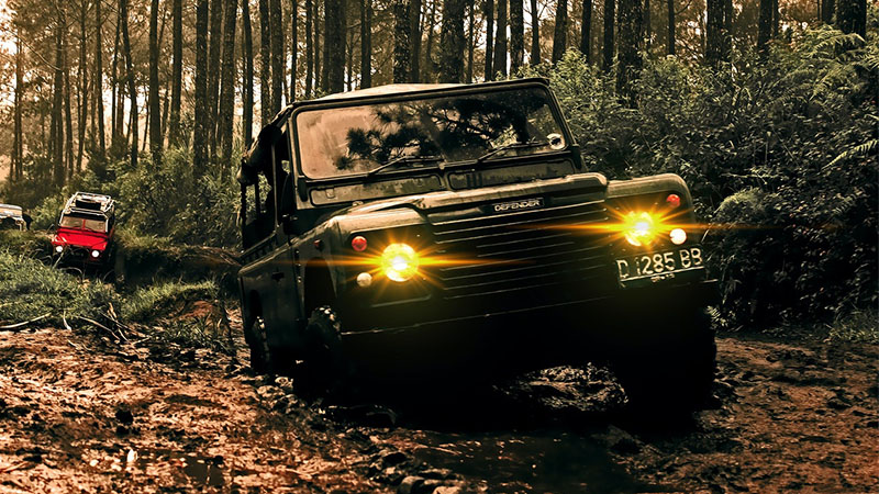 green off road vehicle in a forest