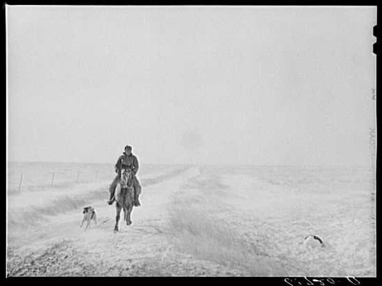 Rancher riding horse with dog alongside him.
