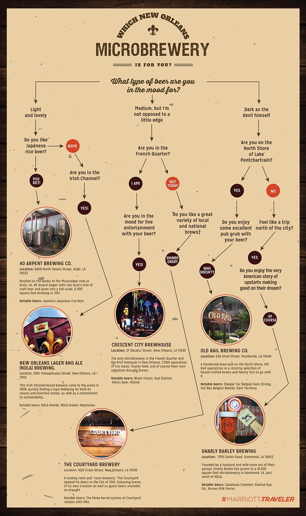 new orleans microbreweries infographic