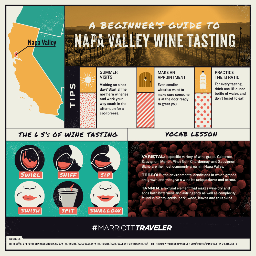 Beginner's Guide to Napa Valley Wine Tasting