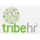 tribehr.com