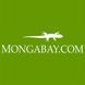 news.mongabay.com