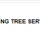 Spring Tree Service