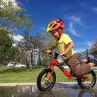 Nishiki Bikes Reviews