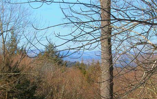 View 185 Reservoir Road, Campton, NH 03223 Alpine Lakes Real Estate