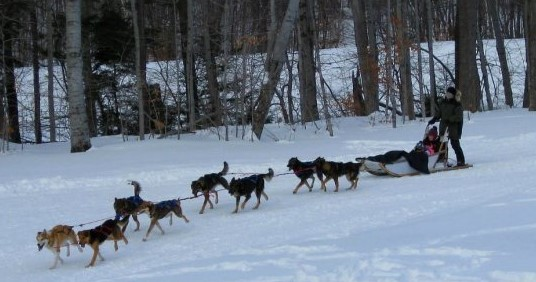 Owner's Dog Sled Event 51 Crooked Mountain Road, Lincoln, NH 03251 Alpine Lakes Real Estate