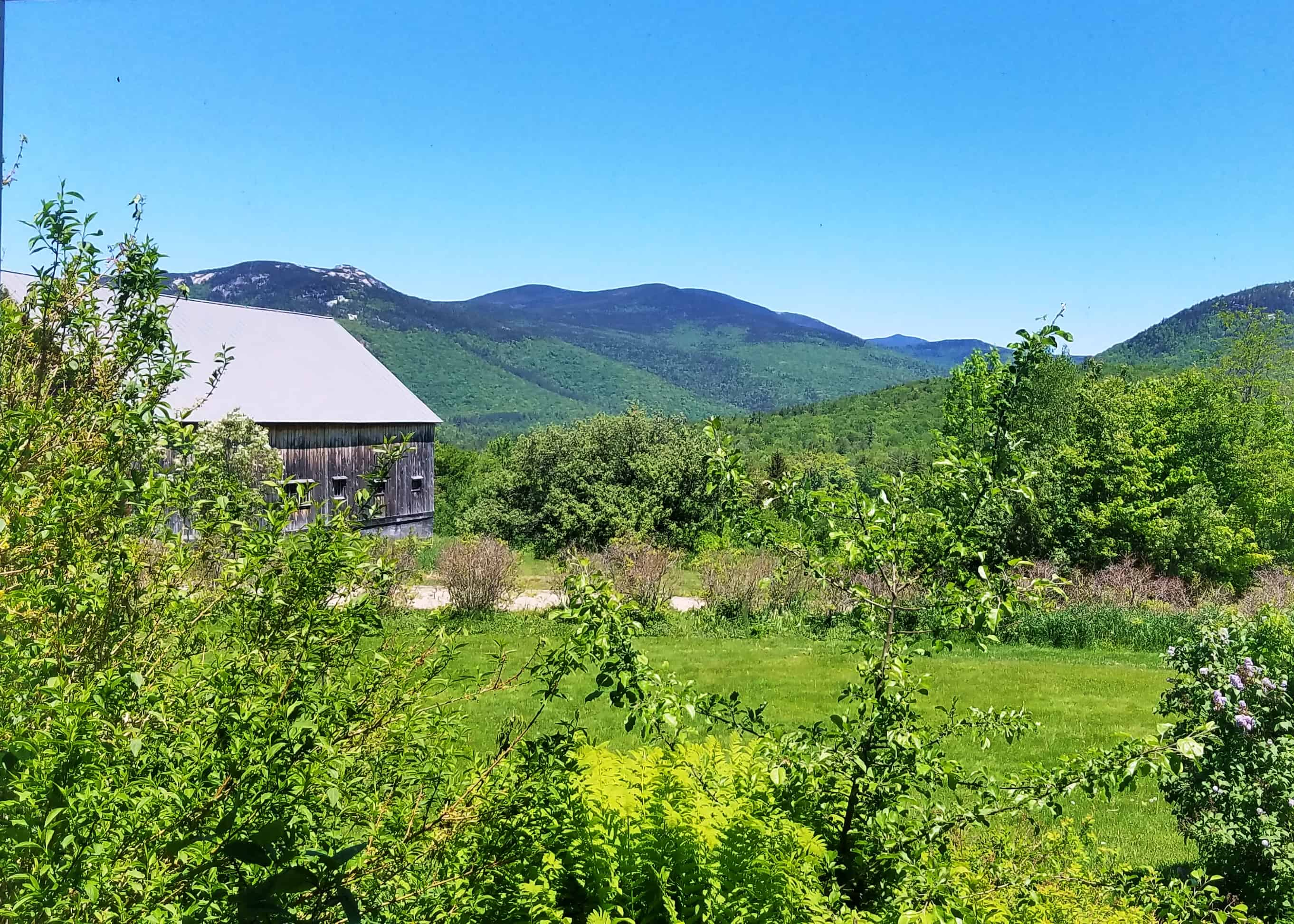 Barn and field 115 Sandwich Notch Road, Thornton, NH 03285 Alpine Lakes Real Estate