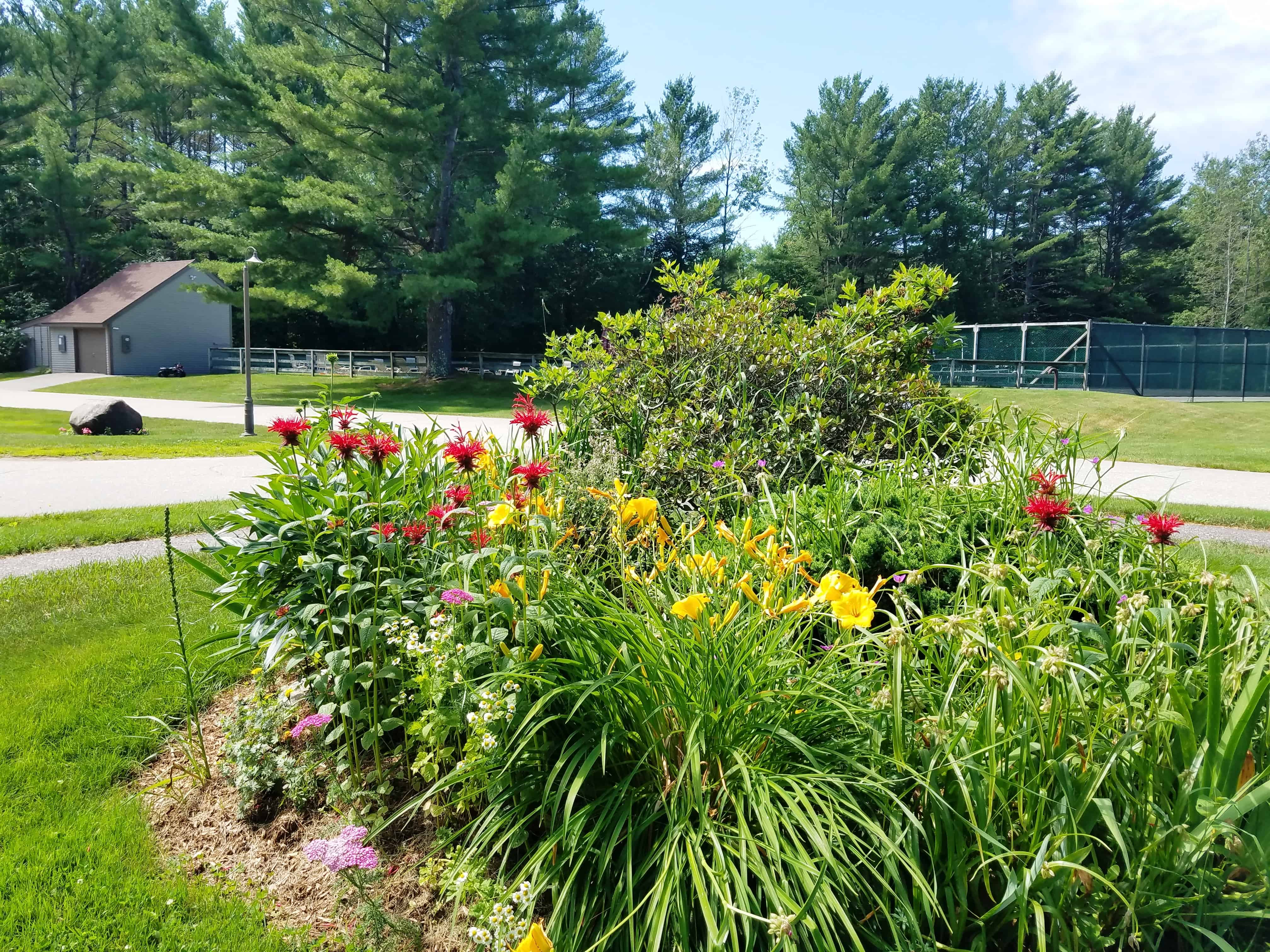 Landscaping 7-6 Overlook Rd Unit 3B, Campton, NH 03223 Alpine Lakes Real Estate