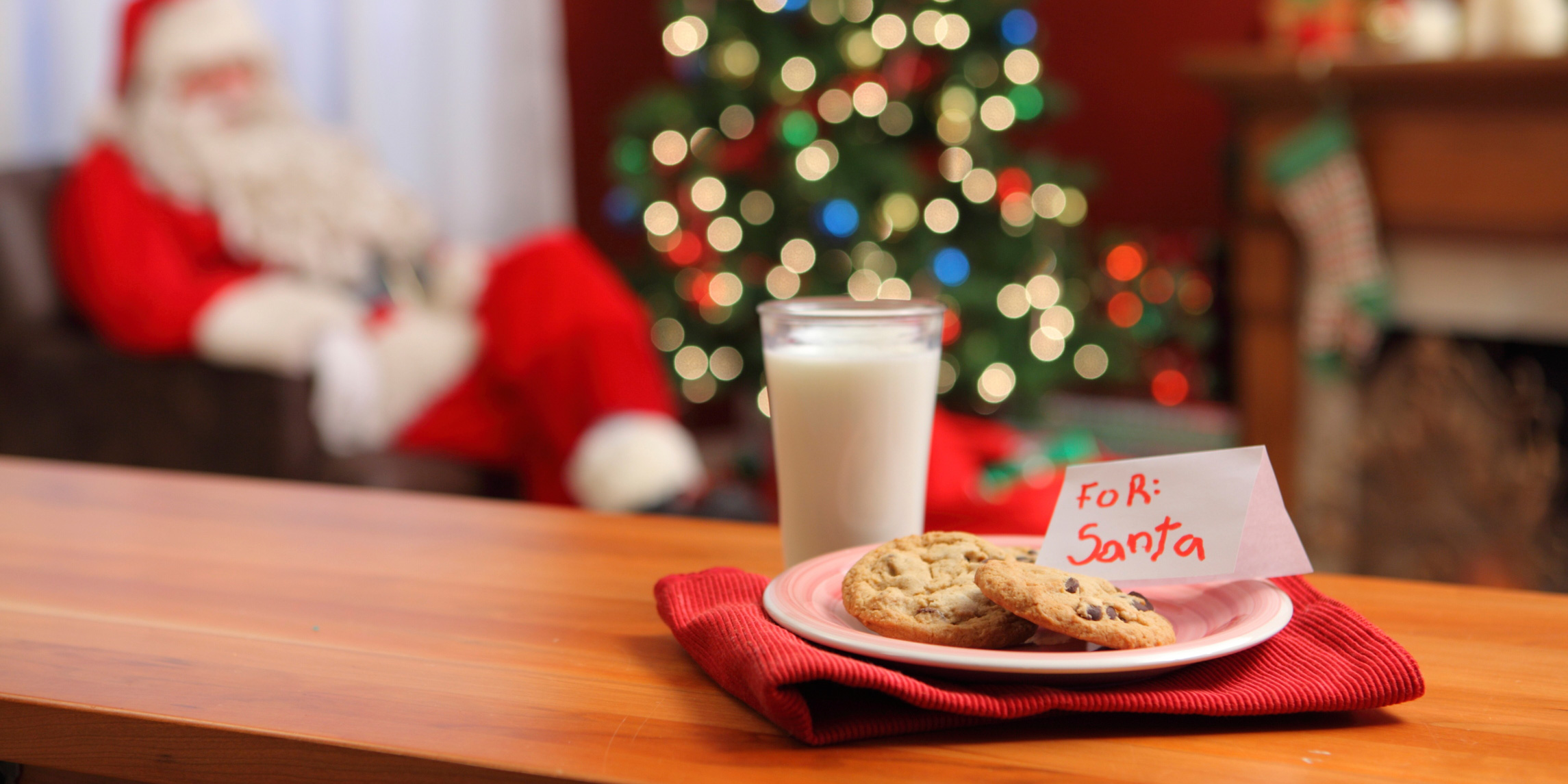 Milk-and-Cookies-for-Santa