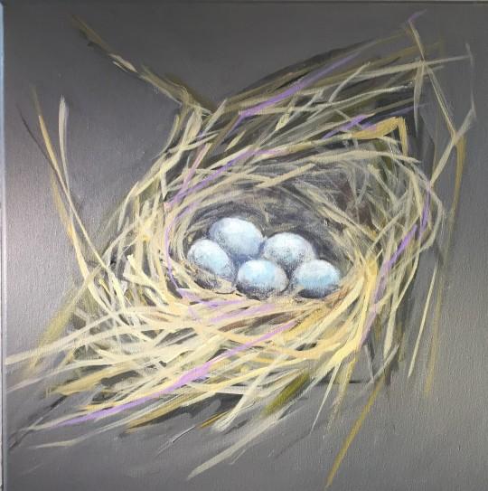 Spring Bluebird nest
