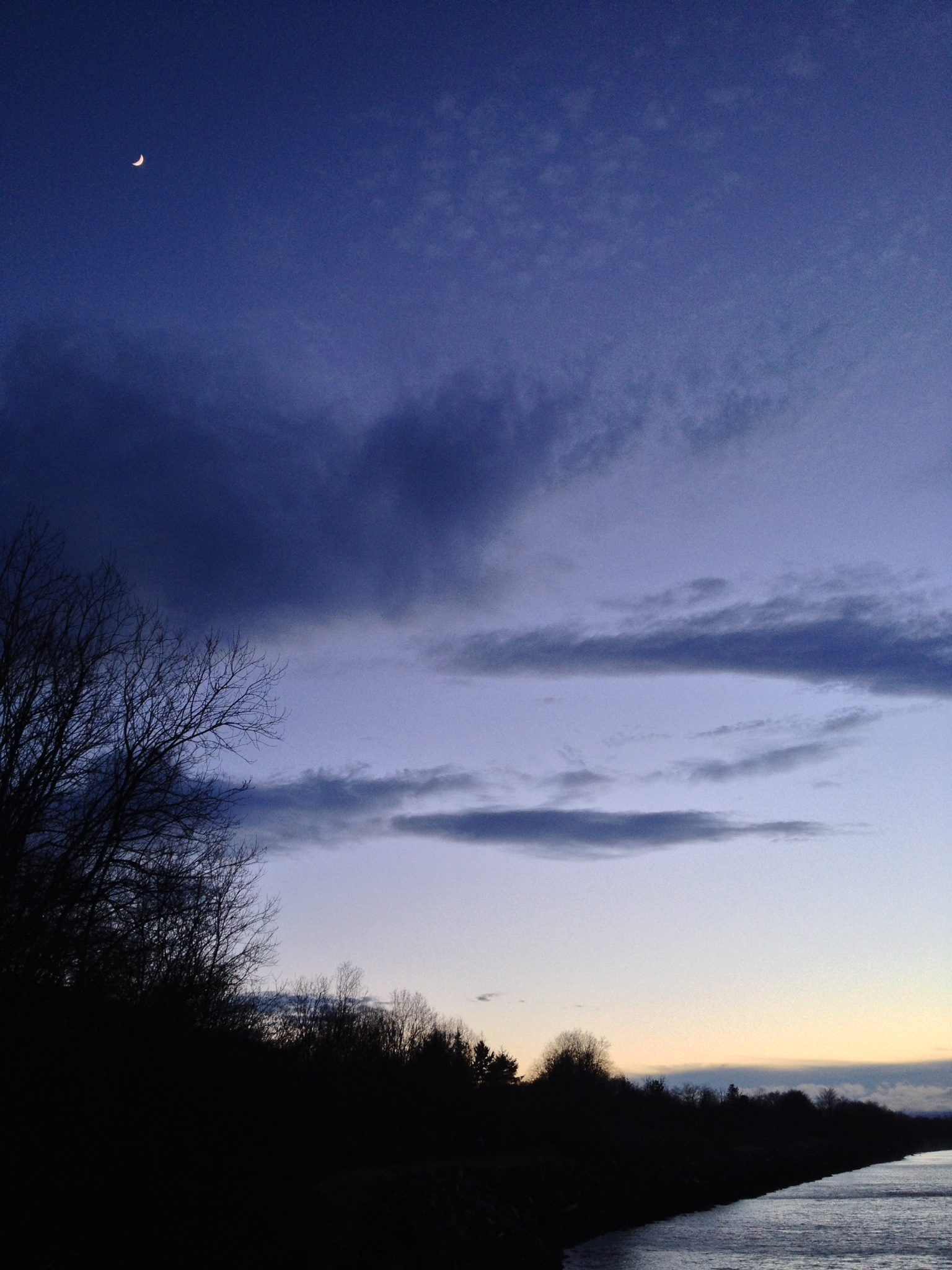 The moon smiles, a fattening crescent, in the top left corner. The sky behind it is dark purple. It fades to light purple and then to light orange on the horizon. Scraggly bare tree branches fight with dark smudges of clouds.