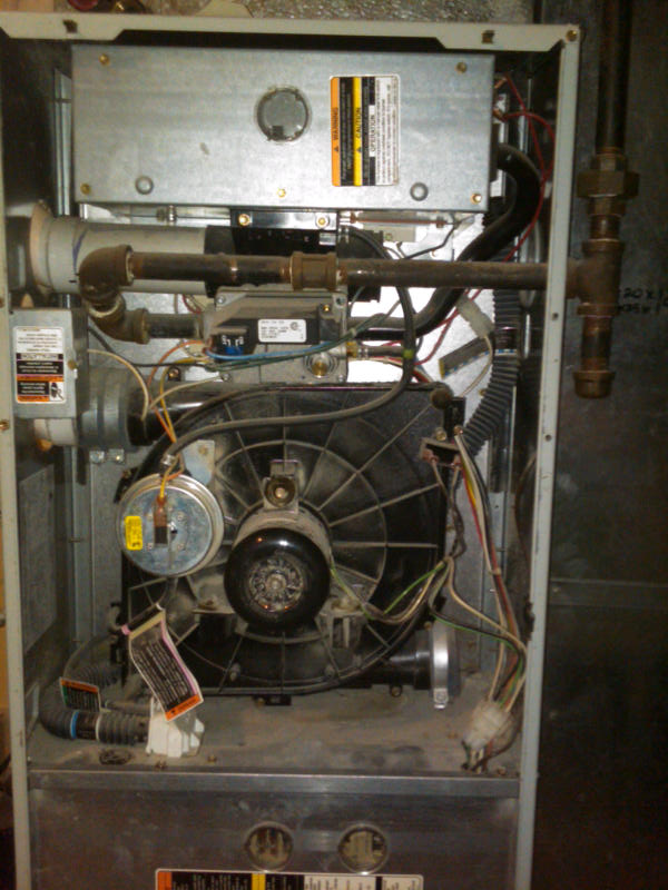 about 39 payne furnace 39 where is my furnace filter located. Black Bedroom Furniture Sets. Home Design Ideas