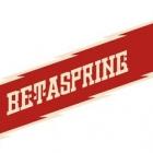 Betaspring 2013 Fall
