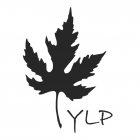 YLP Solutions Private Limited