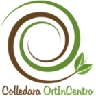 Colledara_ortIncentro