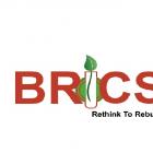 BRICS LLP