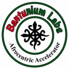 Start Your Business From Scratch with Bantunium Labs